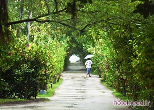 Adaaran Select Hudhuranfushi_050