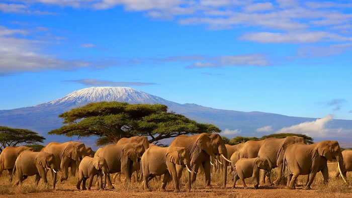 14-Places-To-Travel-Before-You-Die-Kilimanjaro-Tanzania