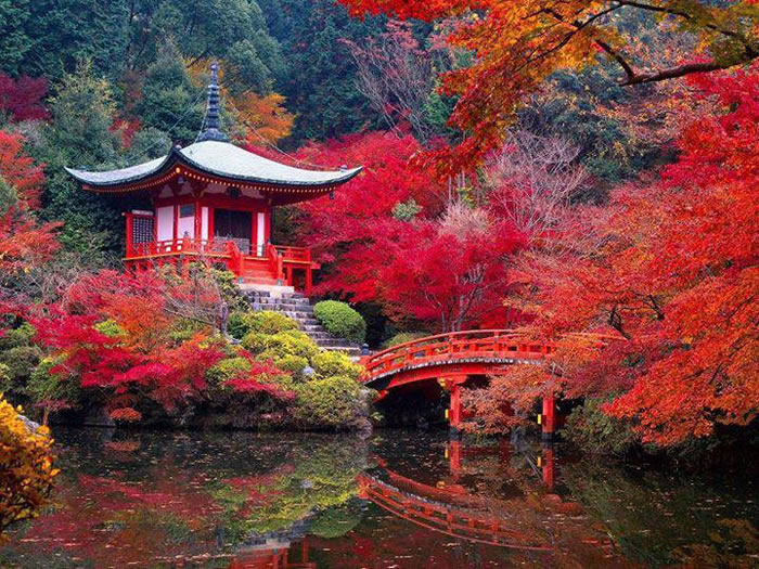 Daigo-ji-temple-Kyoto-Japan-Places-To-Travel-Before-You-Die-