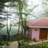 دهکده جنگلی هتل بام سبز رامسر(کلبه جنگلی ۲ نفره)