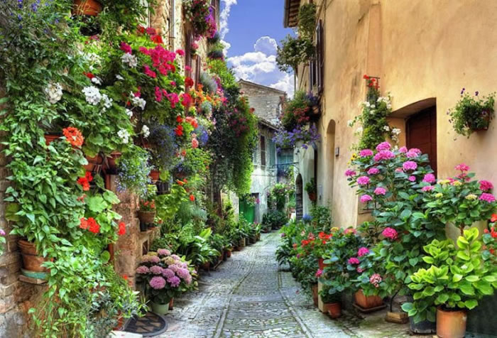 10-Picturesque-Streets-You-Should-Walk-Down-Before-You-Die-15
