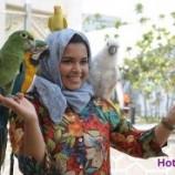 تصاویر گردشگری مالزی
