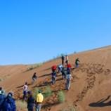 شرط ورود تورهای مختلط به کویر مرنجاب