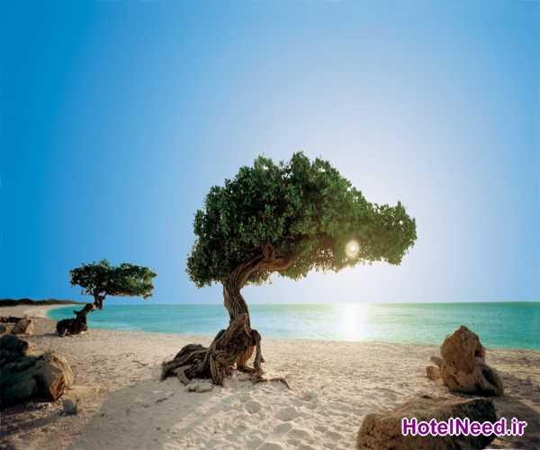 Pristine Islands_006